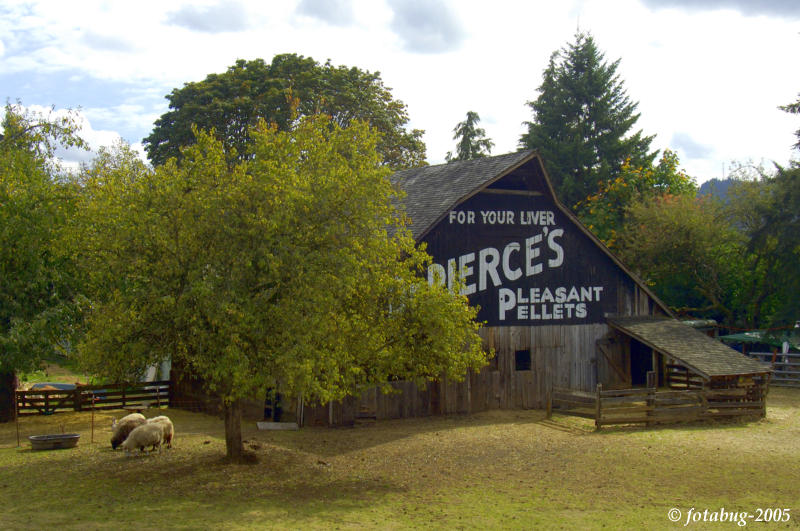 Dr. Pierce's Pills